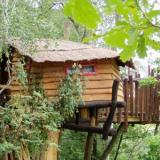 Aussenansicht - Kulturinsel Einsiedel - Baumhaushotel: Fionas Luftschloss