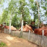 Aussenansicht - Kulturinsel Einsiedel: Waldsiedlum