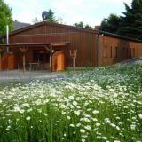 Außenbereich - Ferienhaus Grasse - Doppelzimmer