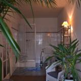 Bad mit Dusche - Pension Am Demianiplatz