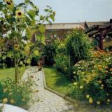 Garten - Ferienwohnung Nikolaivorstadt